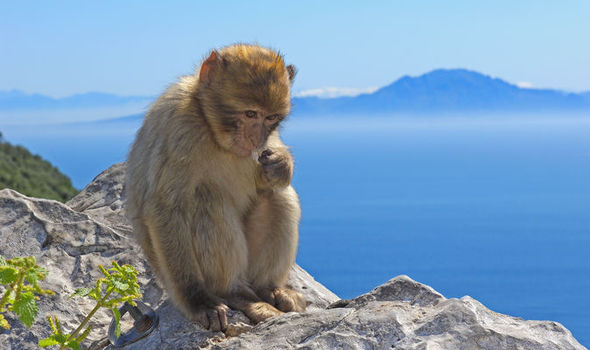 Holidays in Gibraltar